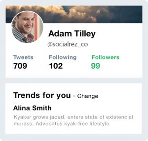 twitter followers example